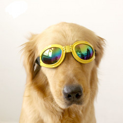 Dog Sunglasses Goggles Yellow